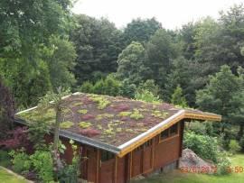 dachbegruenung garten und landschaftsbau thomas wahl. Black Bedroom Furniture Sets. Home Design Ideas